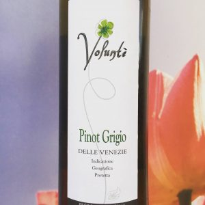 Volunté Pinot Grigio, Review