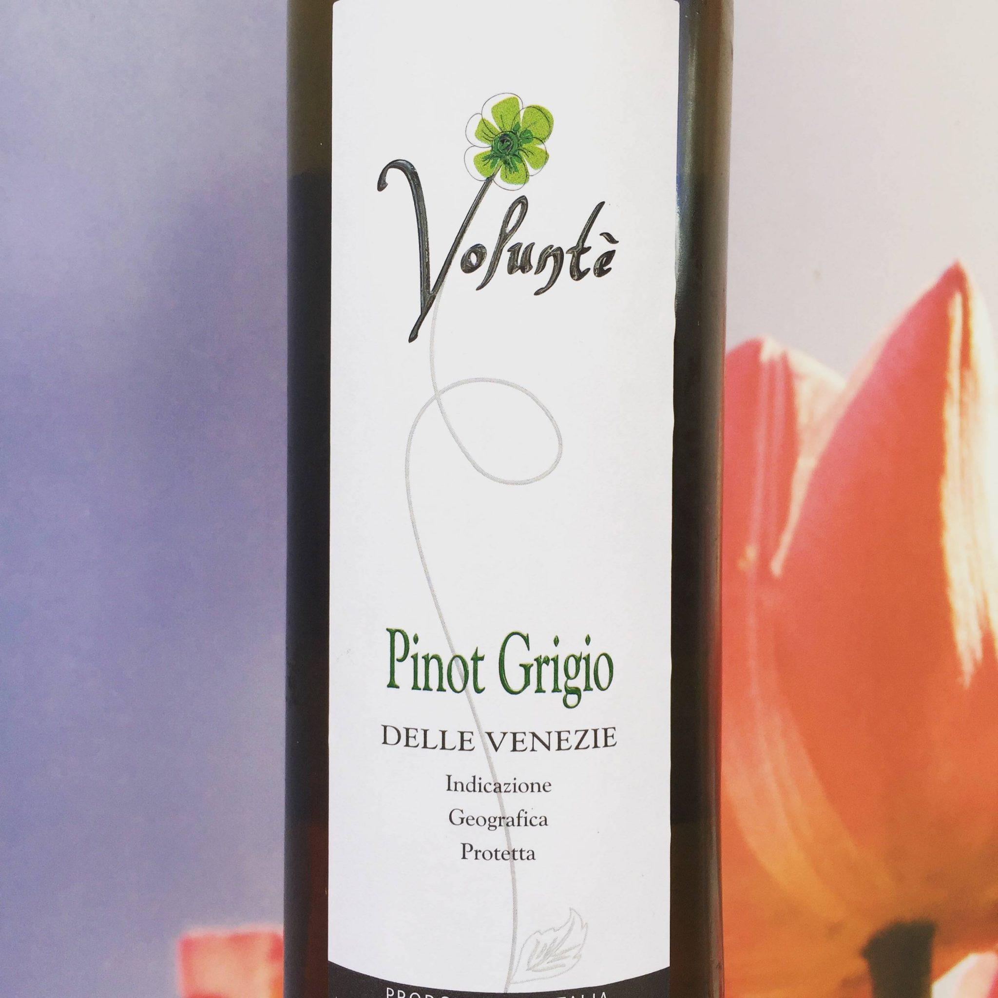 Volunté Pinot Grigio wijnreview door Mama Drinkt Wijn, vinoloog sinds 2006