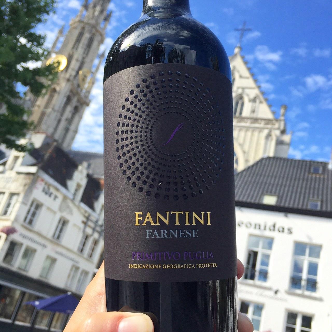 Primitivo Fantini, Puglia Review