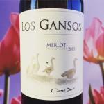 Merlot Cono Sur wijnreview door mama drinkt wijn