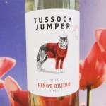 Pinot Grigio Tussock Jumper, Italië