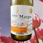 Vina Maipo Chardonnay wijnreview door vinoloog mama drinkt wijn